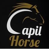 (Caixa Fechada) 12 Condicionadores CAPIL HORSE - 400ml